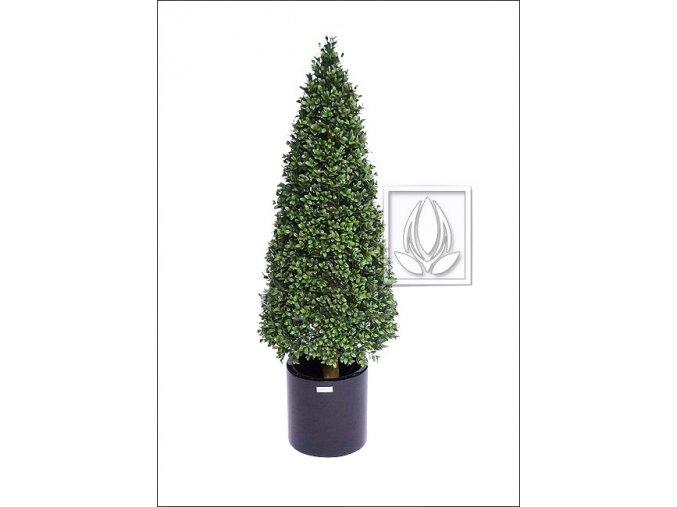 Umělý strom Buxus Cone (Varianta 150cm)