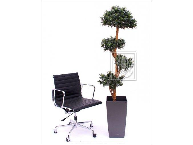 Umělý strom Podocarpus (180cm)