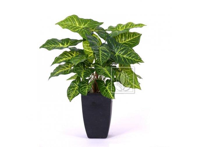 Umělá rostlina Nephthytis (40cm)