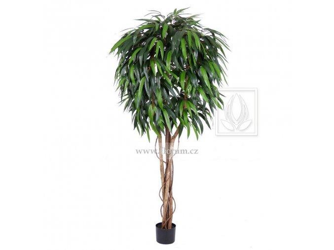 Umělý strom Fikus Longifolia (170cm)