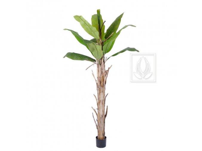 Umělý strom Banánovník (220cm)
