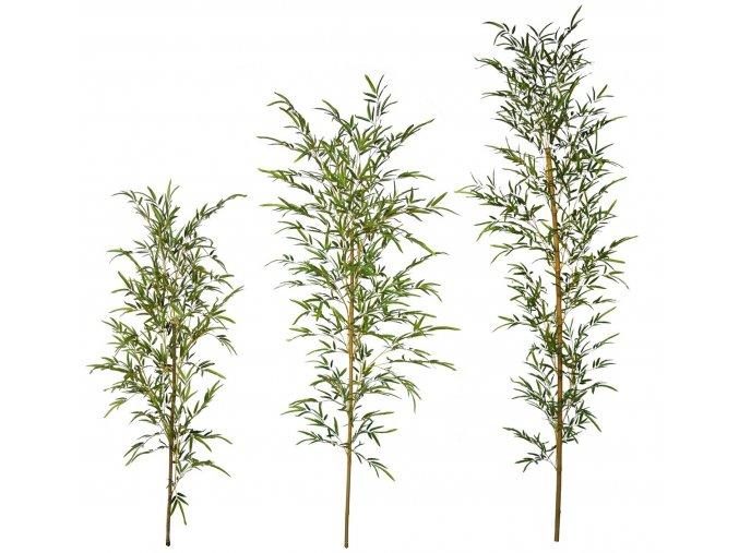 Bamboo Single Tree