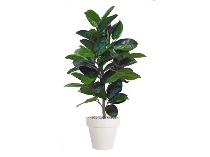 ficus elastica plant 120 cm green 5426002
