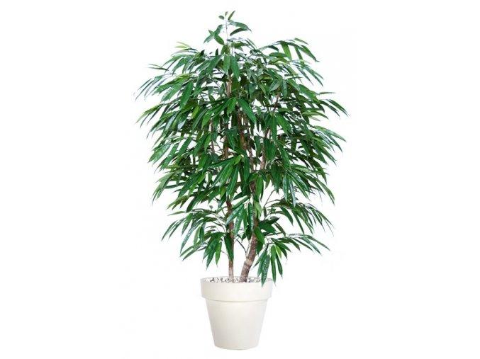 Umělý strom Longifolia Natural Style (výška 180cm)