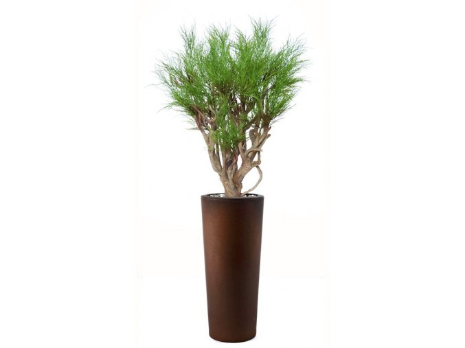 83047 coral plant 120 cm green 5418001
