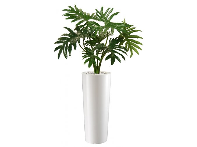 Philodendron Plant 80 cm Green V 5382GRN