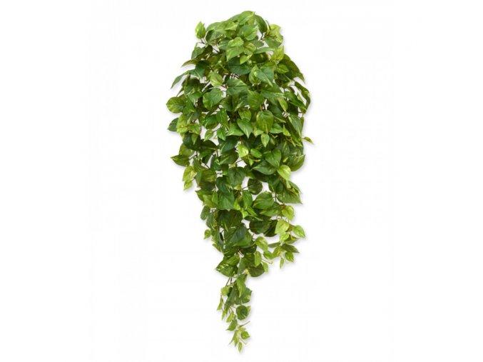 Umělá rostlina Scindapsus (100cm)