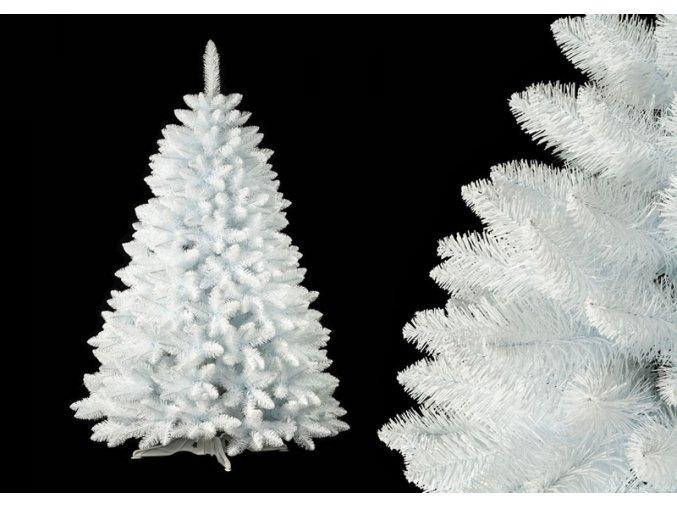 Polar detail
