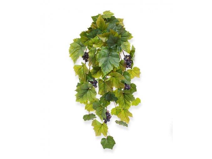 201106 druivenhanger 60
