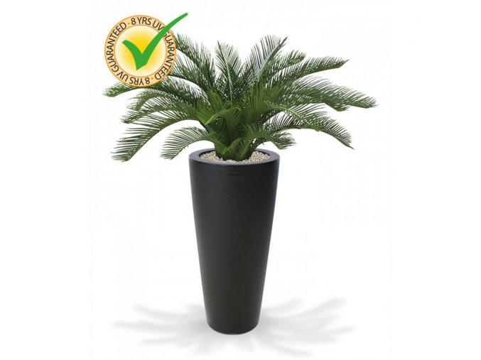 180106uv cycas palm deluxe 60 tondo 70 antraciet