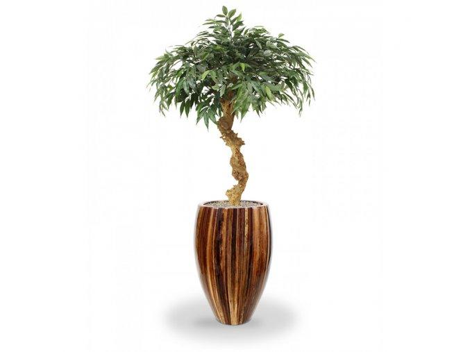 Umělá bonsai Shirakashi (100cm)