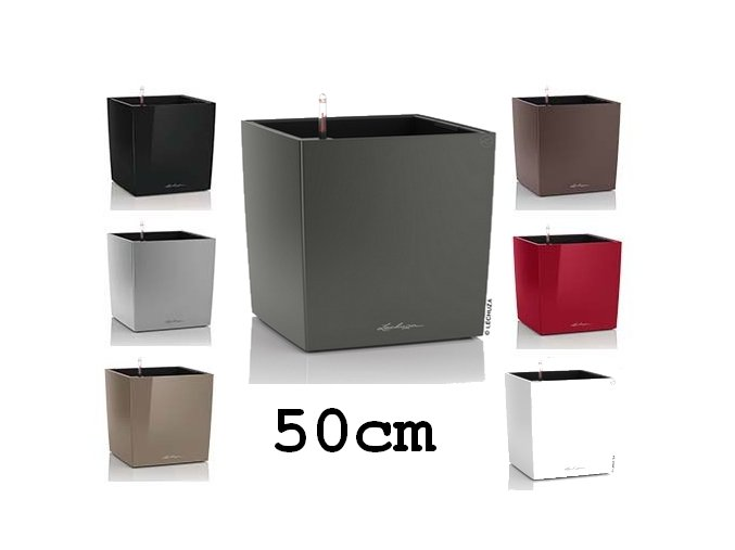 Main Cube obal 50