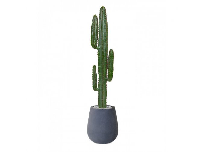 Umělá rostlina Euphorbia (140cm)