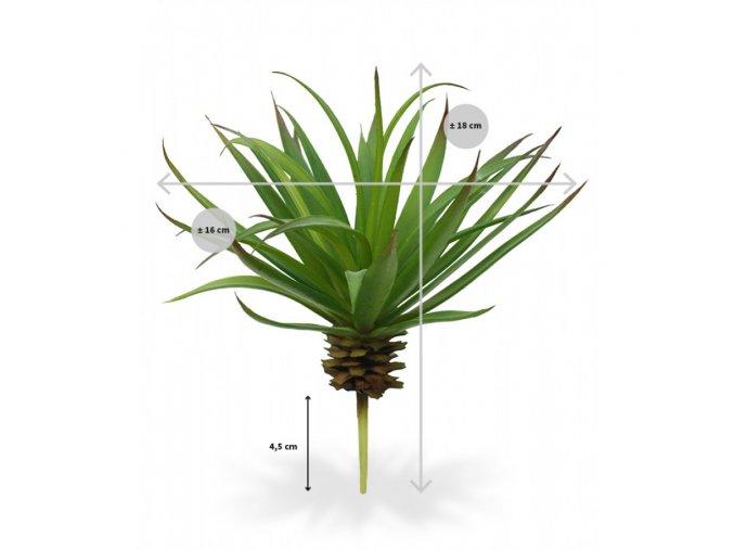 Umělá rostlina Marginata (18cm)