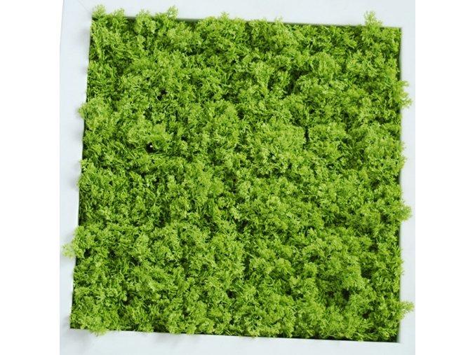 33761 mat lichene uvr 50x50 cm lt green m070uvr