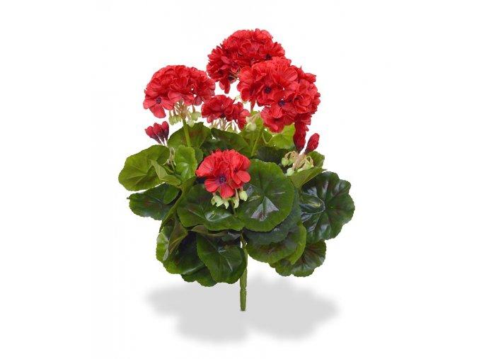 407404rd geranium boeket 40 rood