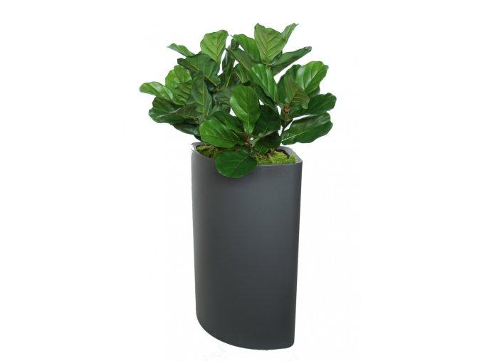 Ficus Lyrata 120 cm Green V5427008 (1)
