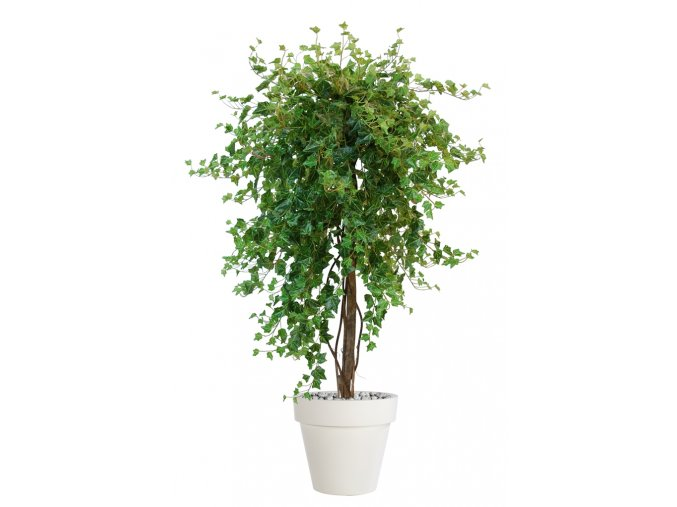 Ivy French Topiary 170 cm Green V5541001