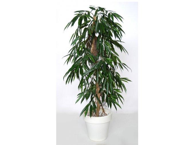 Longifolia Pendula 160 cm Green 1058026