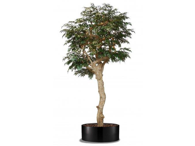 Myrsifolia Nidra Lux 320 cm Green (3)