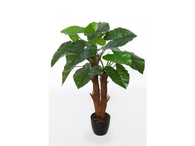 Taro Plant 90 cm Green V5553002
