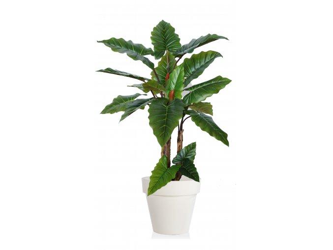 Emerald Philo Plant 170 cm Green V5571GRN