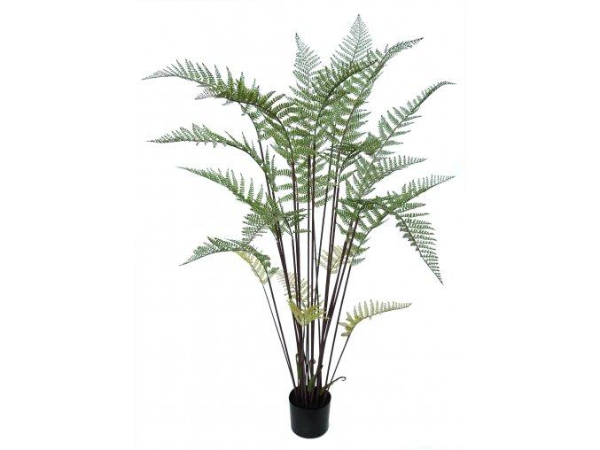 Fern Tree w pot 155 cm Green 5573GRN