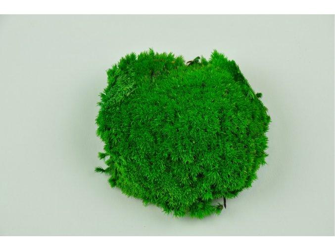Pole moss zeleny