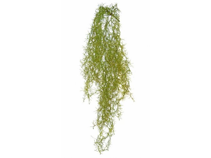 93634 tillandsia 90 cm green 5510grn