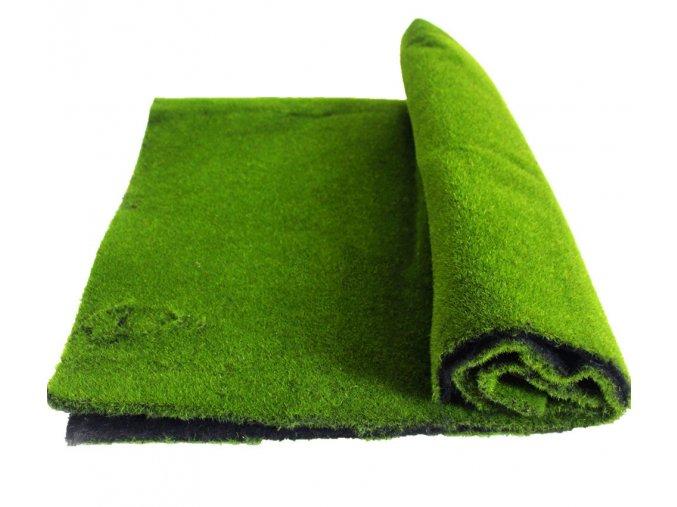 Mech koberec Simple 100x100cm main