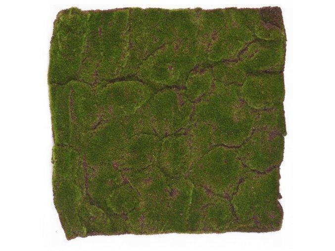 Mech koberec Base V main