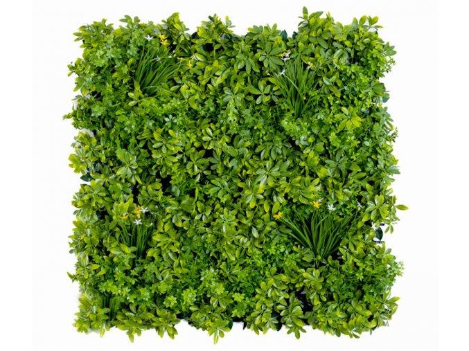 Vegetatie schefflera Plantenwand 100x100cm mat Kunsthaagvoordeela