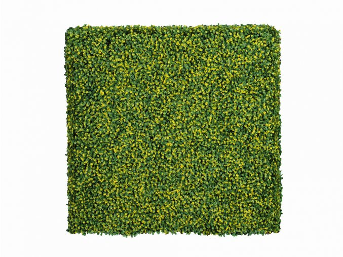 Buxus fijn bont Kunsthaag 50x50cm mat Kunsthaagvoordeel