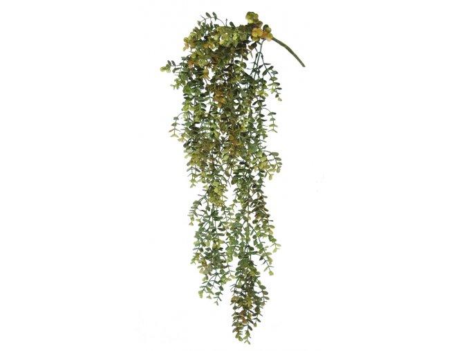 Boxwood Hanging 70 cm(1)