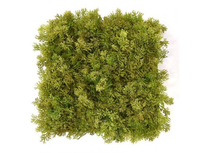 Mech Reinder 25x25 zeleno hnedy