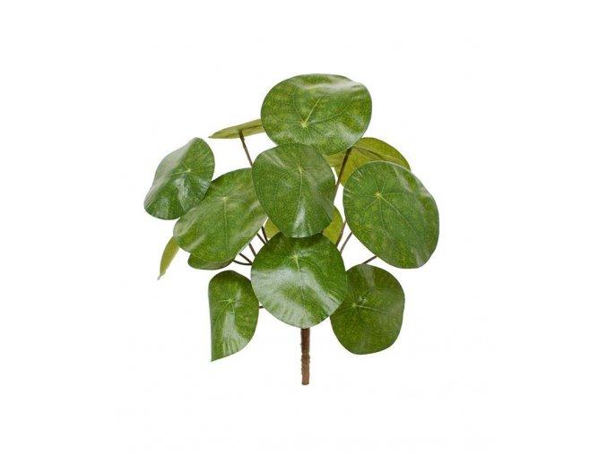 Umělá rostlina Pilea (25cm)