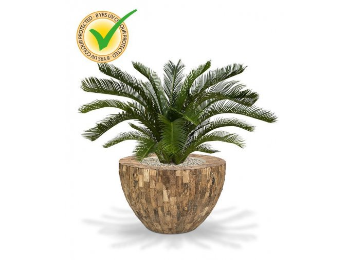 180108uv cycas palm deluxe 80 cemani wood bowl