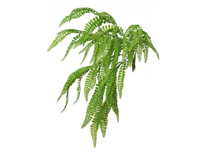 Fern Fabulosa Mini Bush 40 cm Green 5580GRN