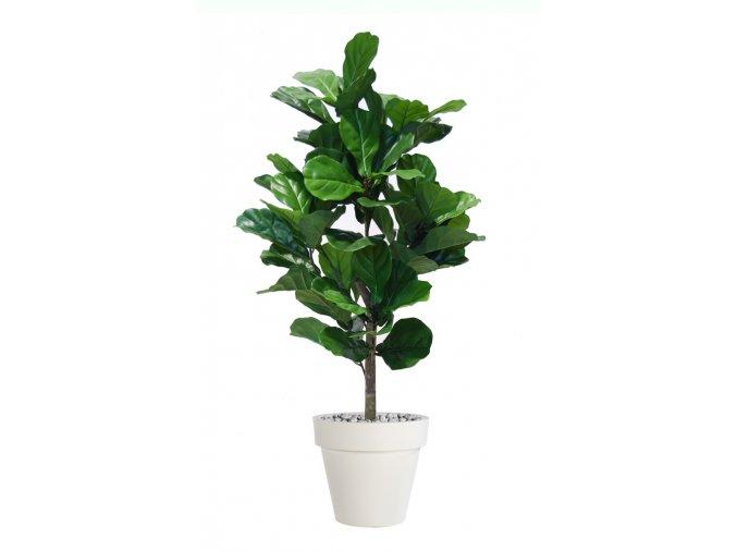 Ficus Lyrata Plant 130 cm Green V5427003