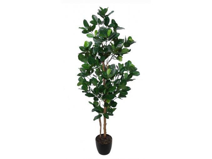 Jackfruit Tree 170 cm Green V5443004