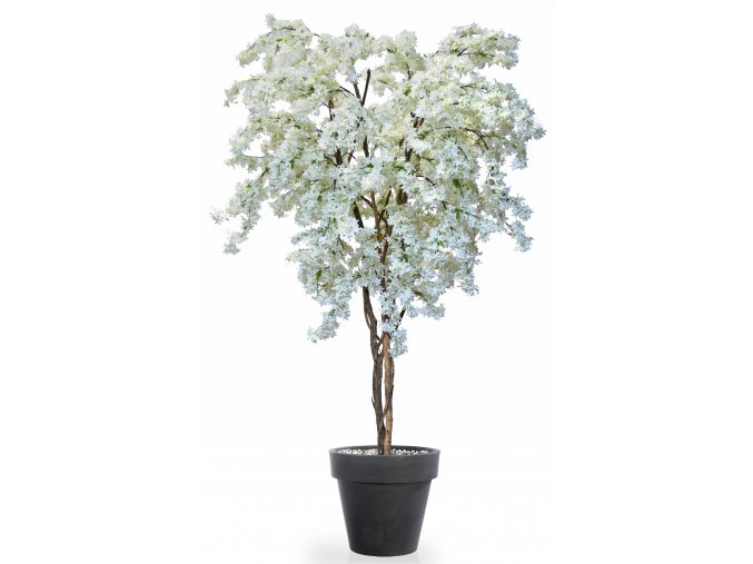 Jasmine Twisted Tree 240 cm White V5563001