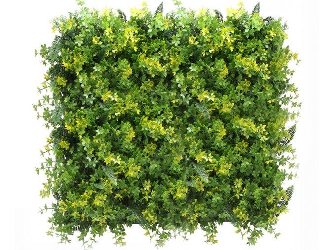 Vegetatie varen lineos kruid 1m2