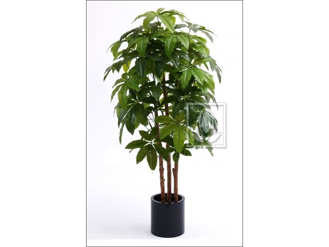 Umělý strom Schefflera Lady (Varianta 210cm)