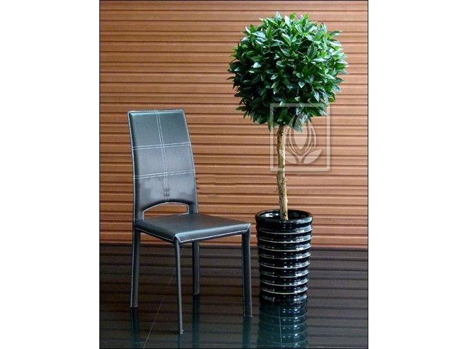 Umělý strom Vavřín Lux (Varianta 160cm)