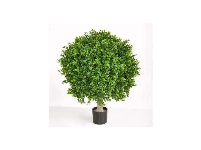 Umělý strom Boxwood Sphera (průměr 60cm, výška 80cm) na kmeni  buxus