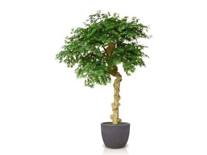Umělý strom Maple Nidra (250cm) (Barva listů vícebarevná (Vario))