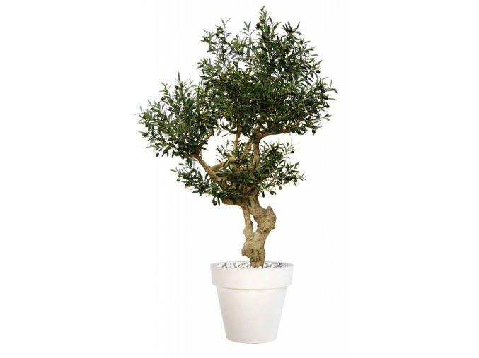 Umělý strom Olive Crown (Varianta 210cm, včetně květináče)