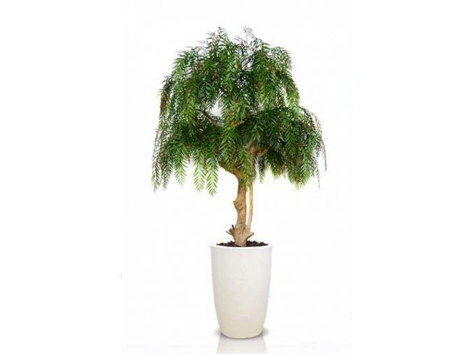 Umělý strom Pepper Crown (Varianta 200cm, včetně květináče)
