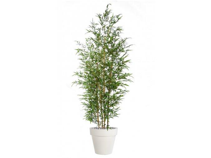 Umělý strom Bambus Arrangement x3 (240cm)
