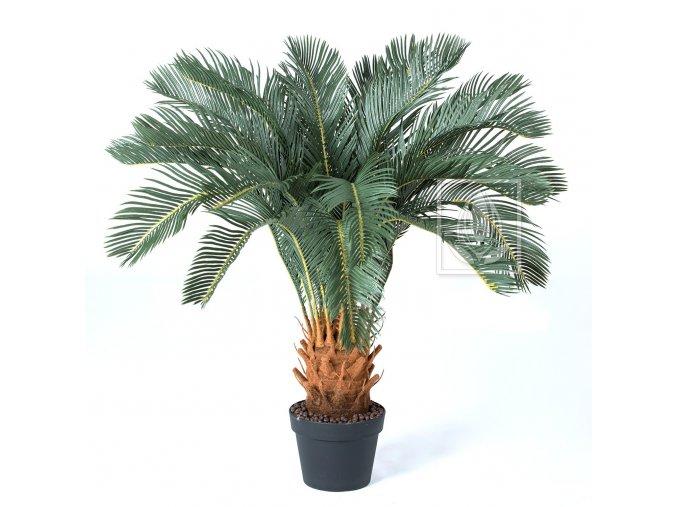 palma cycas 90cm